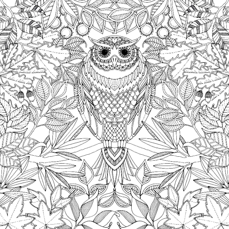 dessin coloriage à imprimer pour adulte
